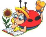 reading bug